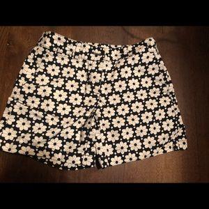 Pants - Ann Taylor Loft shorts